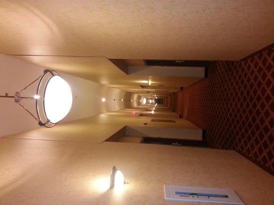Comfort Suites: comfort suite vidalia LA