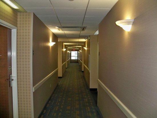 Comfort Suites: Hallway.