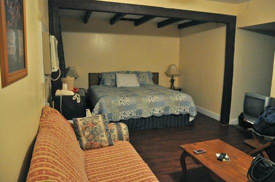 أجنحة ونزل بيتش تري: The room with king sized bed, refrigerator and couch 
