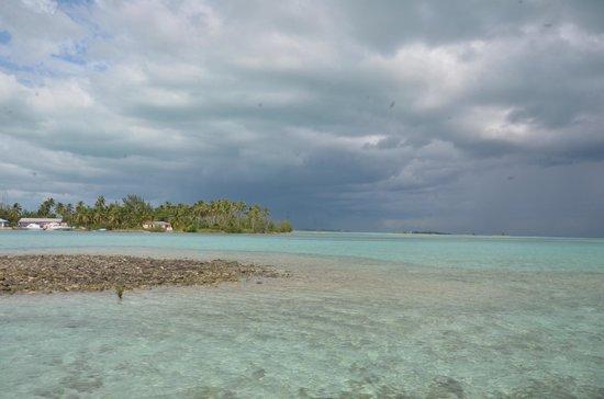 Swain's Cay Lodge : fishing flats