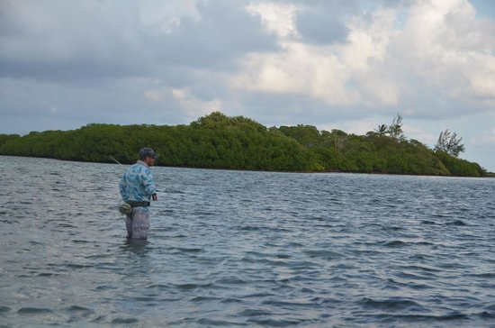 Swain's Cay Lodge: Easy wade fishing right in front of the lodge