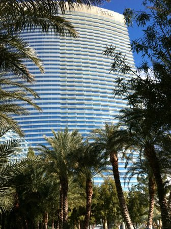 ARIA Resort & Casino: View of the hotel from the pool
