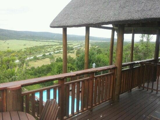 Addo Afrique Estate: great view of addo park from my room