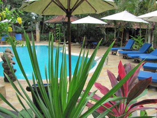 Dasa Wana Resort: zwembad met zonneterras