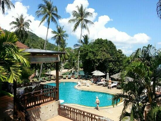 Coral Cove Chalet: very nice weather all clients look very happy on the swimming pool. .