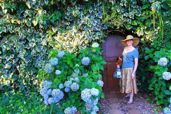 Lucky Bean Guesthouse: The gated entrance to lucky bean