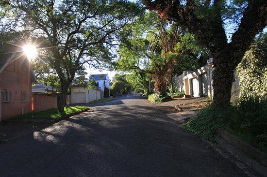 Lucky Bean Guesthouse: Street view of neighborhood in melville