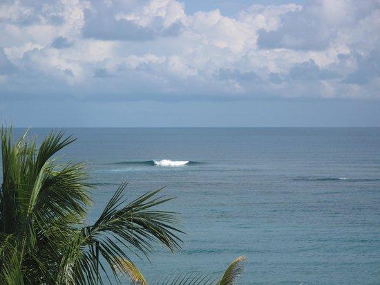 写真LG Surf Camp枚
