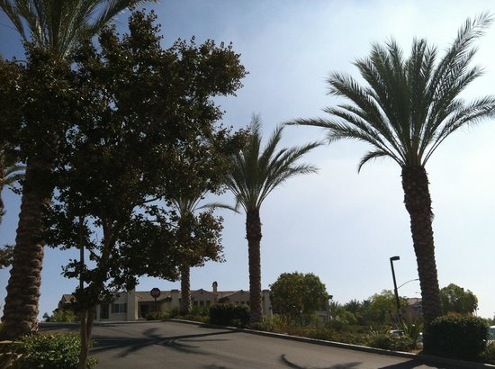 Hampton Inn & Suites Moreno Valley: Walkway to Moreno Valley Mall