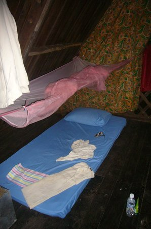 Tungog Rainforest Eco Camp : thin mattress; mosquito net with holes
