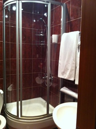 Гостиница Бетси: Standard room bathroom with a shower and all bathroom amenities.