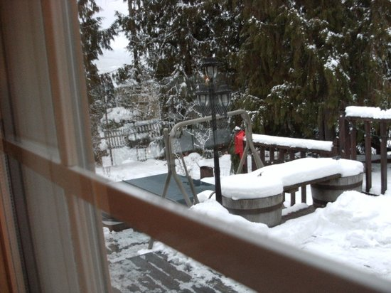 Cozy Cabin Bed and Breakfast: view outside to the hot tub