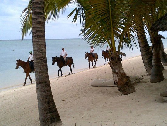 LUX* Le Morne: Horse riding on beach