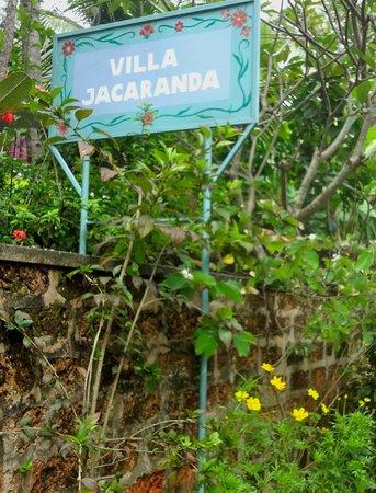Villa Jacaranda: eingang