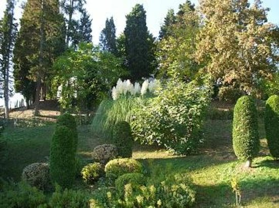 Villa Campestri Olive Oil Resort: Garden