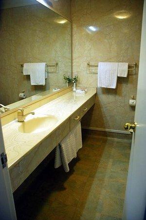Fountain City Motor Inn : Standard Unit Bathroom