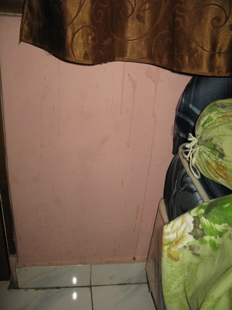 Agus Guest House: stains on wall
