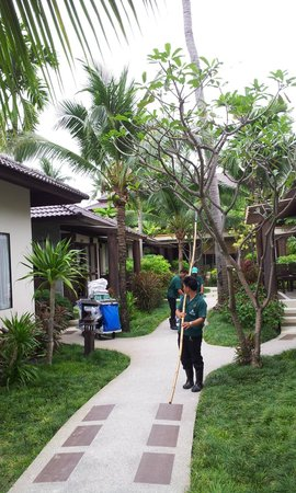 Baan Chaweng Beach Resort & Spa: Staff doing landscaping