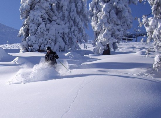 Pro-Skischule