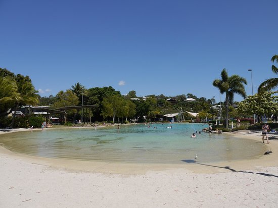 Backpackers by the Bay: The lagoon at Airlie Beach