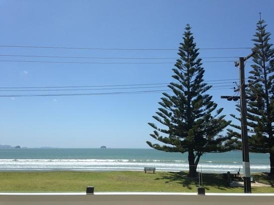 Oceanside Motel Whitianga: view from studio 8