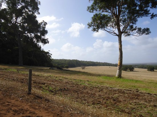 Augusta Sheoak Chalets: Another view