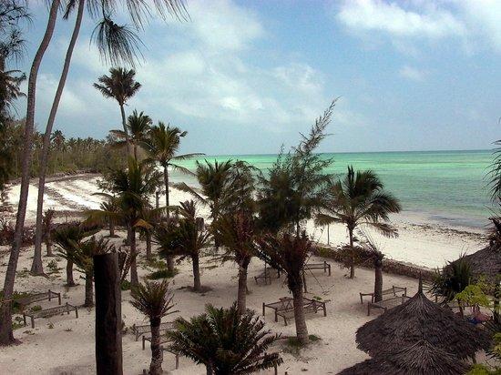 Palumboreef Beach Resort: spiaggia di Uroa vista dal Palumbo