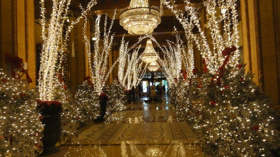 The Roosevelt New Orleans, A Waldorf Astoria Hotel: hall d'entrée