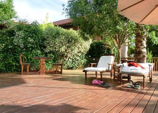 Gumtree Guest House: pool and deck area