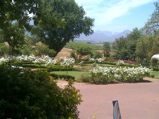 The Restaurant At Neethlingshof: View from Restaurant