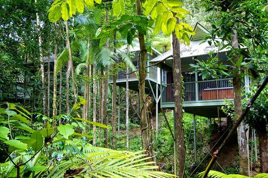 Daintree EcoLodge & Spa: Looking onto the spa suites from hiking trail