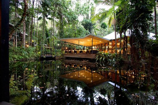 Daintree EcoLodge & Spa: The restraurant