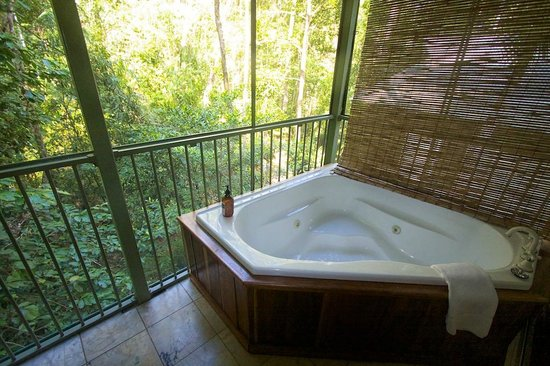 Daintree EcoLodge & Spa: Spa suite looking over the rainforest