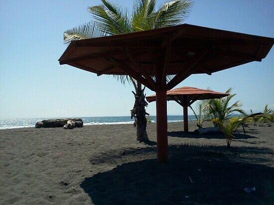 Hotel Las Olas Beach Resort: bord de mer.
