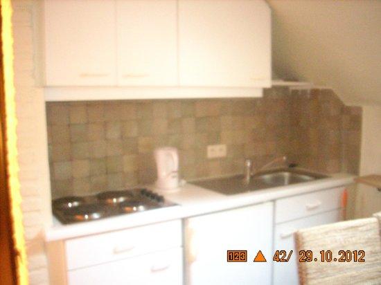 Hotel-Flats Leopold: кухня в номере