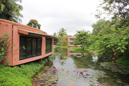 The Leela Goa: pond