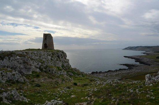 Masseria Panareo: A walk to the torre