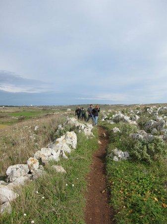 Masseria Panareo: Along the way from the masseria