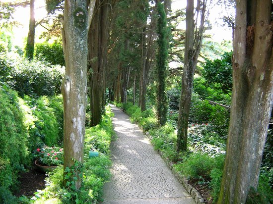 Villa San Michele: A path in the gardens