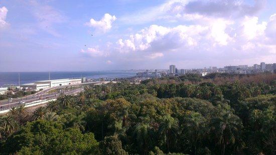 Sofitel Algiers Hamma Garden: magnifique vue et paysage