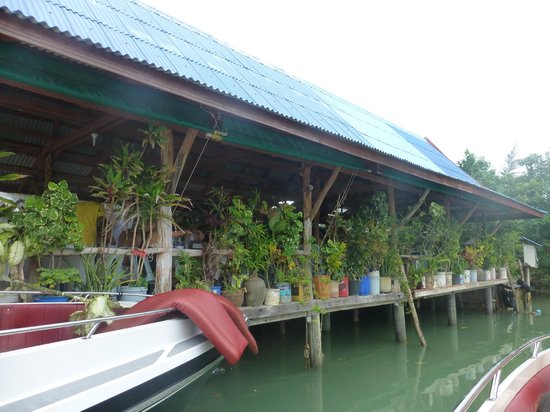 Samui Boat Charter: Fisherman Village restaurant