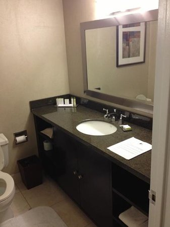 DoubleTree by Hilton Hotel Chicago - Schaumburg : newer vanity