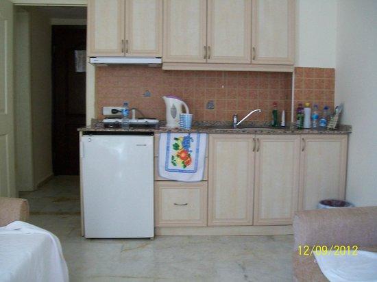 Start Apartments: our kitchen area
