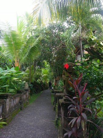 Bebek Tepi Sawah Villas & Spa: path to our room