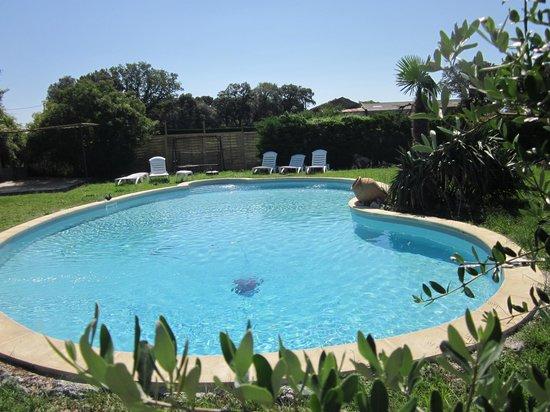A la Maison : Notre piscine