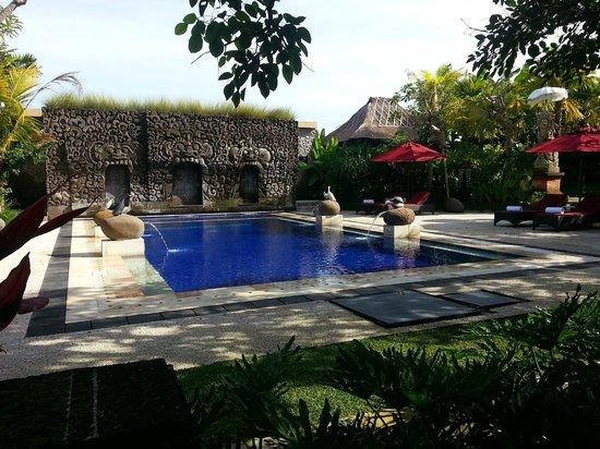 โรงแรมเทปิ ซาวาห์ วิลล่าส์ แอนด์ สปา: pool