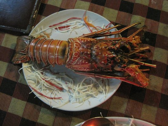 Lobster picture of lighthouse residency port blair for Andaman and nicobar islands cuisine