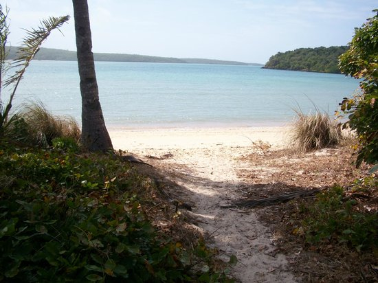 Villa Vaucluse Apartments: Cape York ~ Somerset Beach