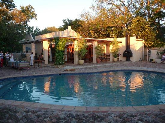 De Leeuwenhof Hotel/Guesthouse: ontbijtterras met zwembad