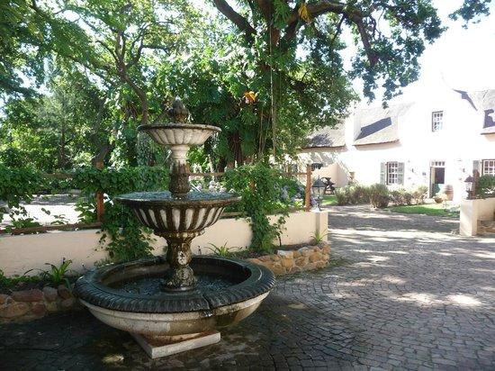 De Leeuwenhof Hotel/Guesthouse: Binnenplaats